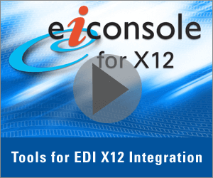 EDI X12 Tools Technical Demonstration Video