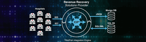 Revenue Recovery for Hospital Case Study
